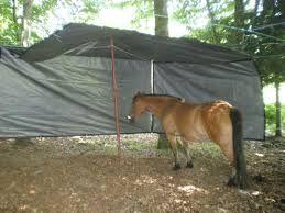 abri chevaux pas cher recherche