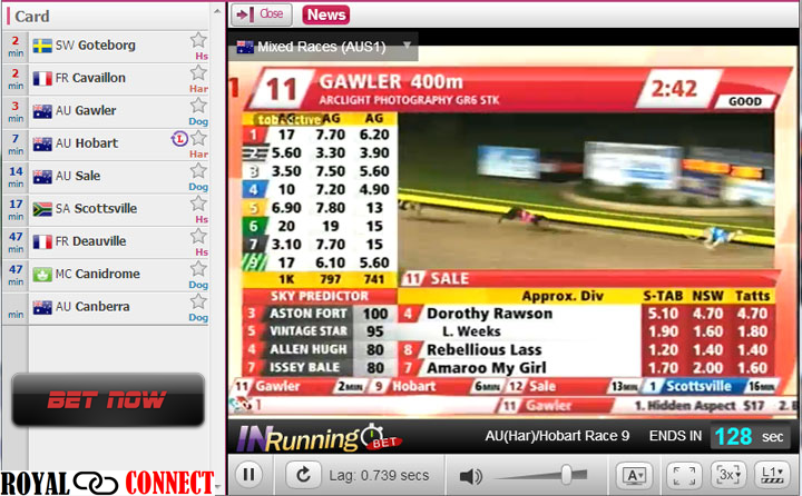Betting doesn't have to be rocket science. Free play horse
