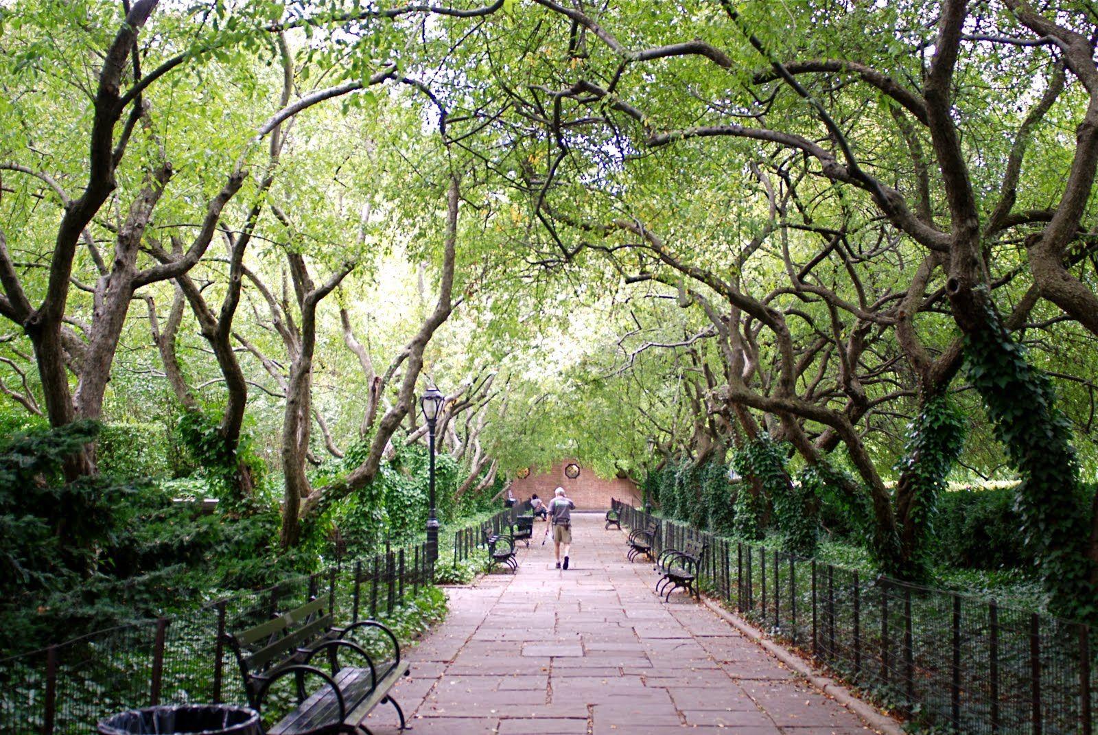 Central Park Cons Garden
