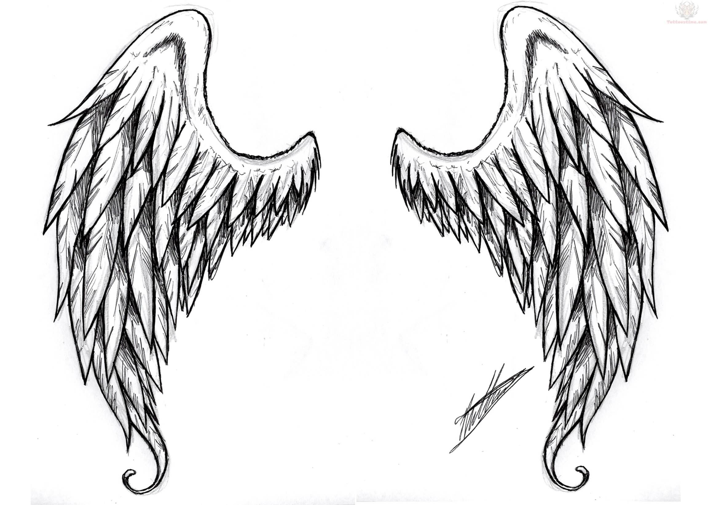 Wing tattoo design - Celtic Tattoo Designs Wings Tattoos Pictures And Images Page 23