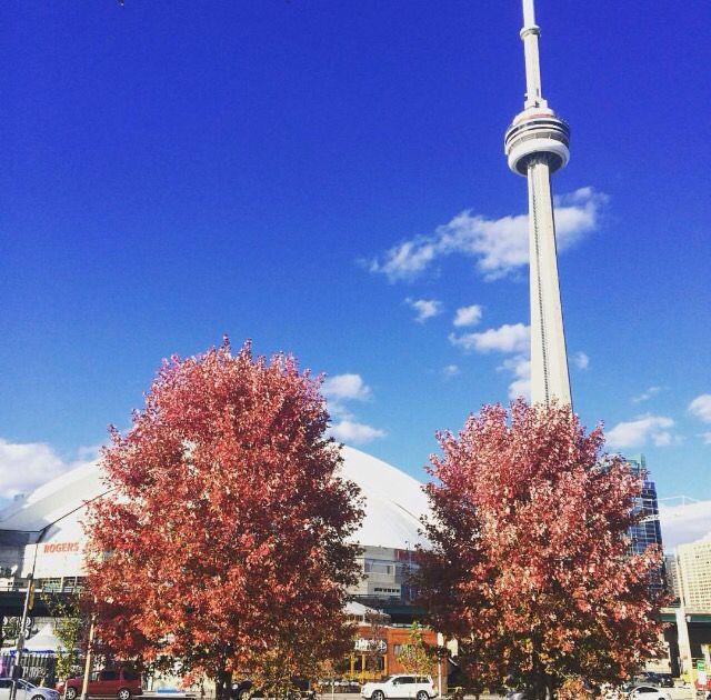 Blue sky CN Tower - Dan Surman