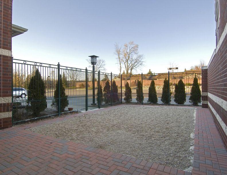 Dog courtyard | dvm360.com