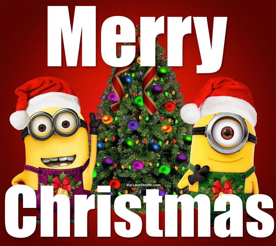 Merry Christmas Minions holidays christmas christmas