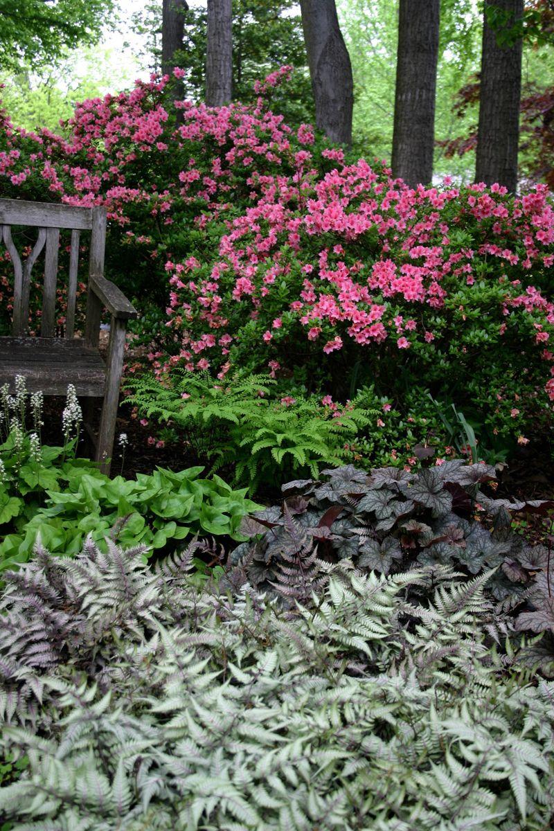 Small Japanese Garden Patio