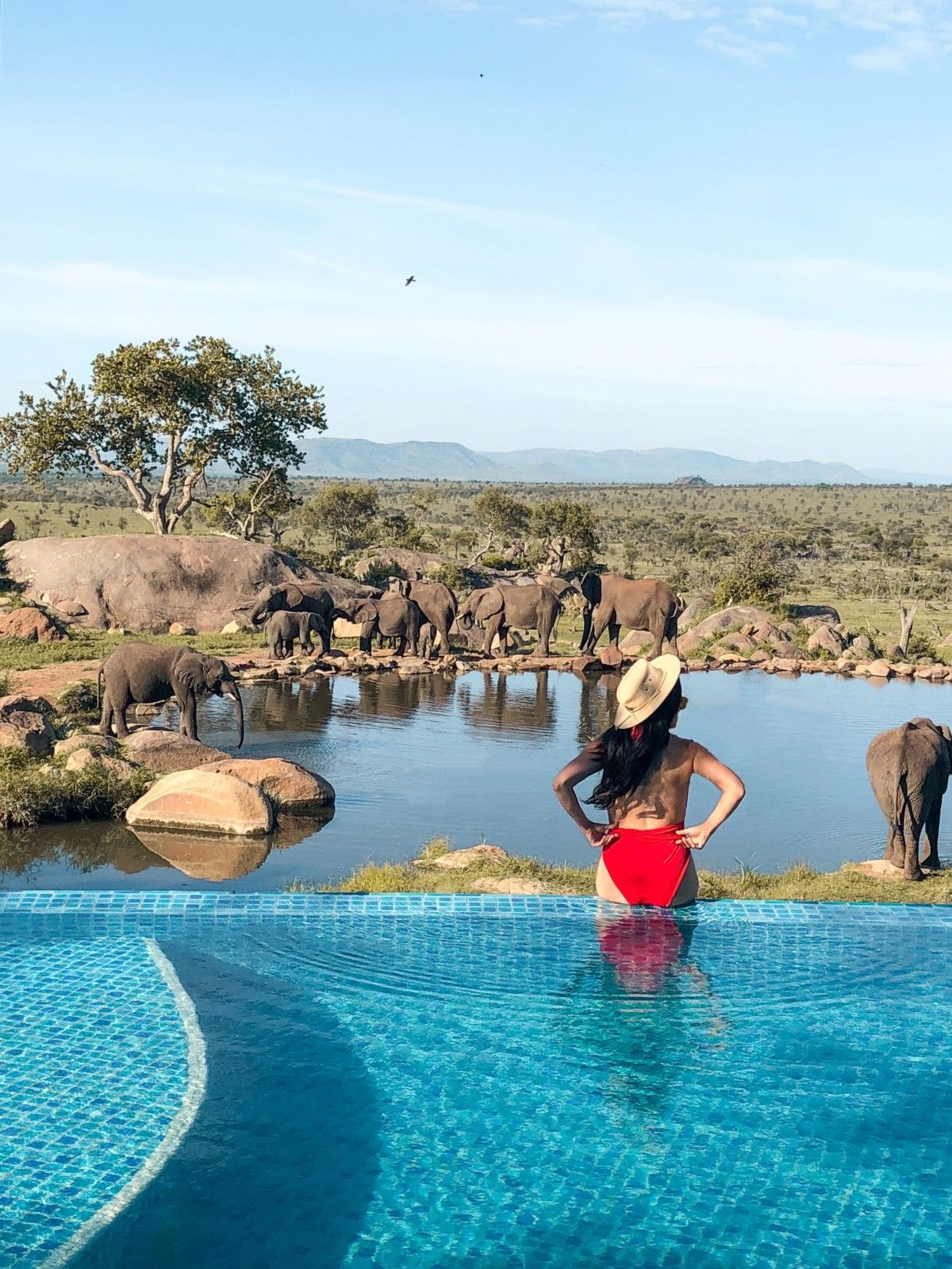 21 Spectacular Photos That Will Send You To Serengeti National Park Serengeti National Park National Parks Africa Destinations