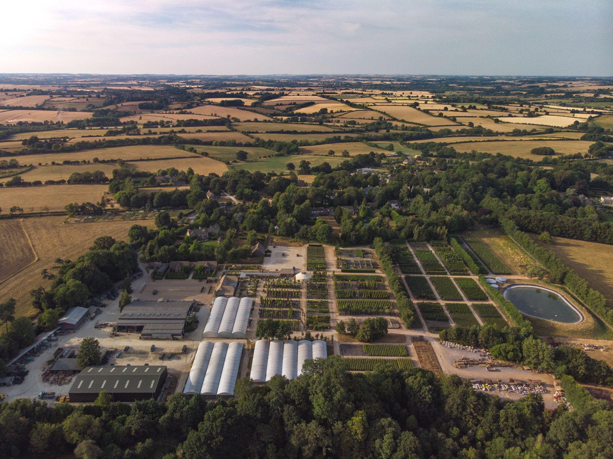 Plant Centre - Nicholsons Plants, Forestry & Landscapes ...