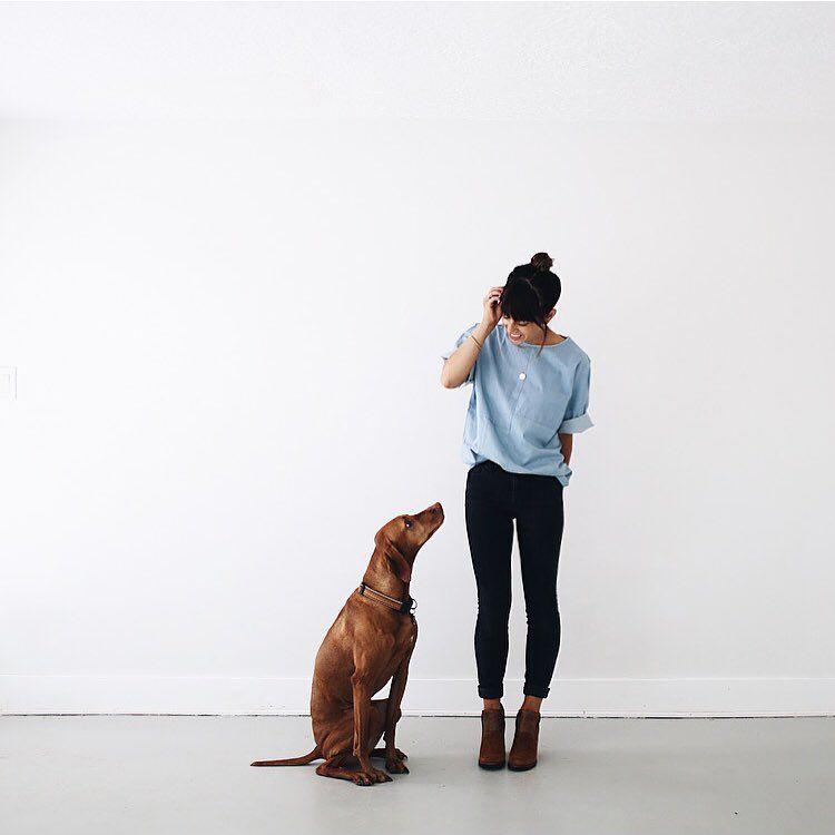 Vizsla, the velcro dog. Amelia (Emmy) Jones (@ameliahannah) • Instagram photos and videos