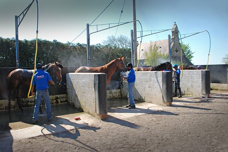 Horse Racing Yard Facilities Horse Washing Horse Barns Horse Boarding