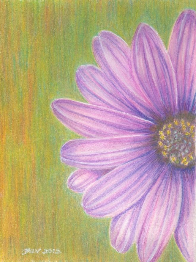 Painting Flowers With Colored Pencils