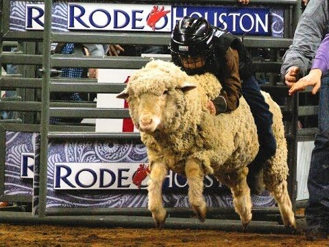 2016 Houston Livestock Show and Rodeo 1-20 March