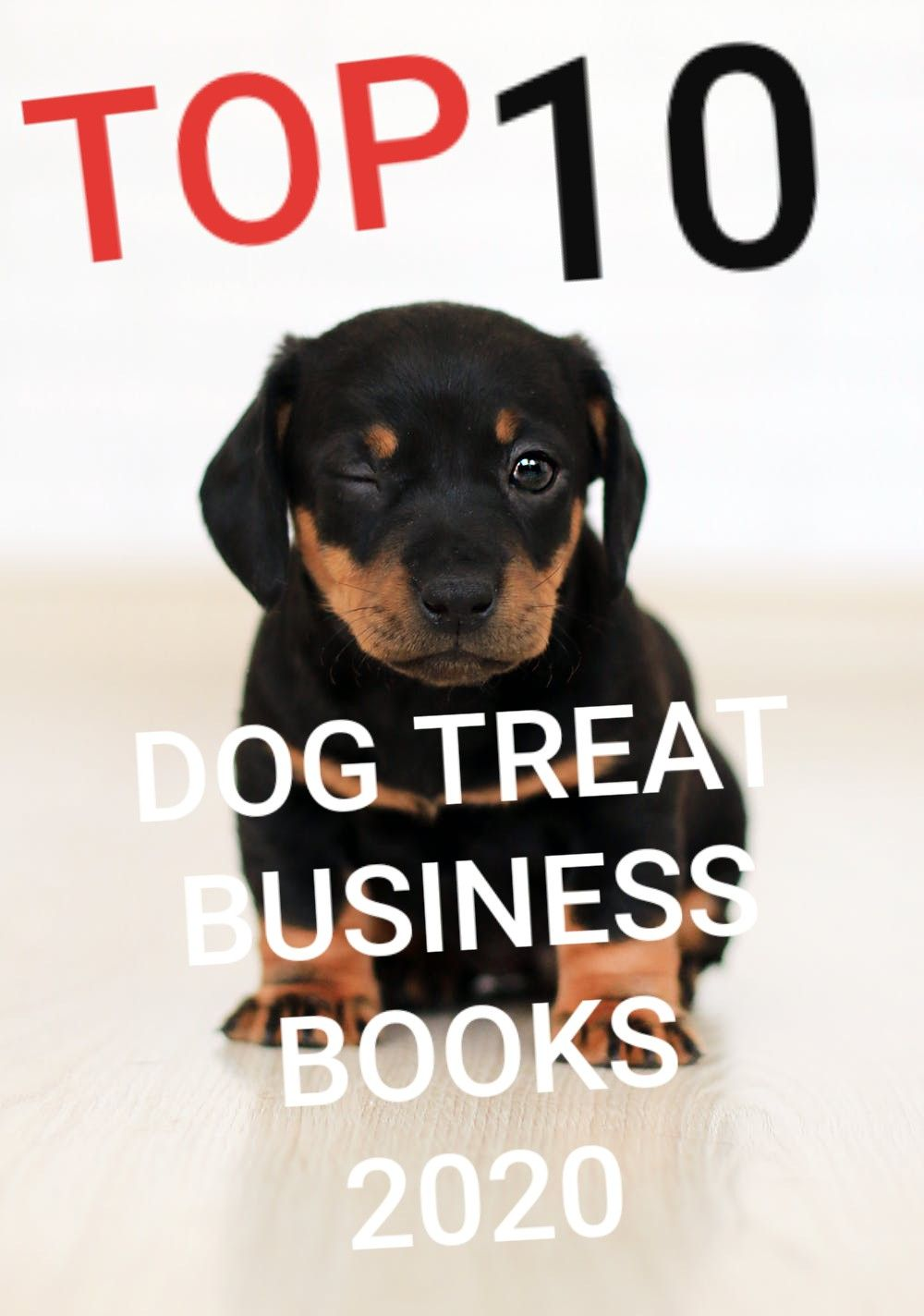 Top 10 Pet Treat Business Books Start your own Pet treat Business ...
