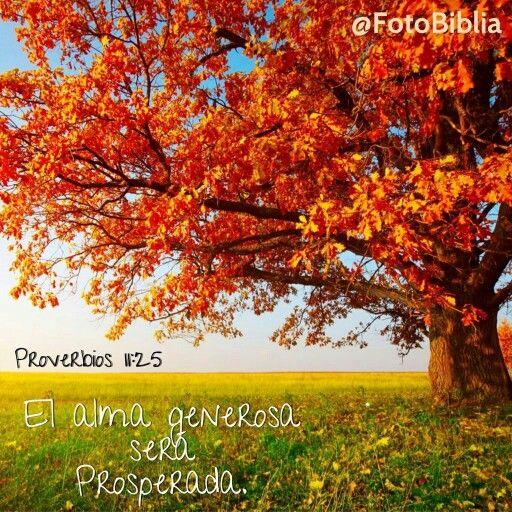 Versiculos De La Biblia De Animo: Proverbios 11:25 El Alma Generosa Será Prosperada; Y El