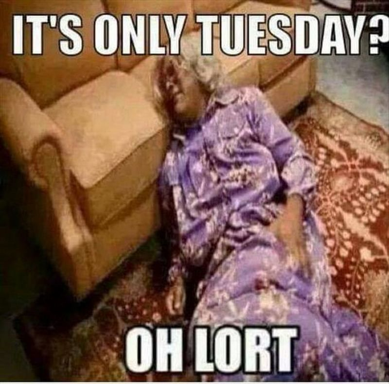 101 Funny Tuesday Memes When You Re Happy You Survived A Workday Madea Funny Quotes Tuesday Humor Madea Humor