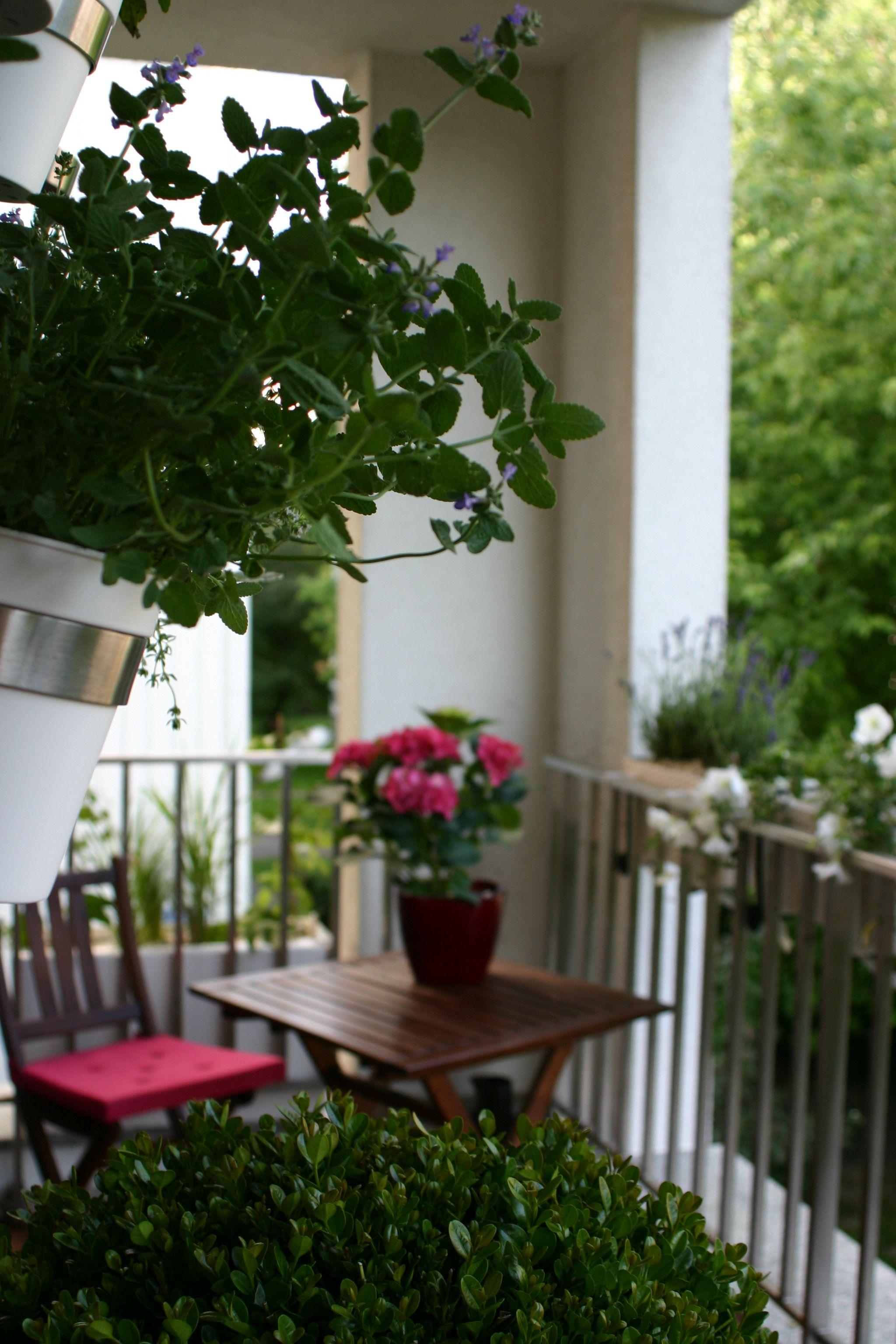 Balkon W Romantycznym Stylu Plants