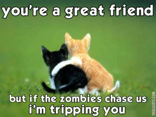 Funny Memes For Your Best Friend : People let me tell ya bout my best friend . the geek in me