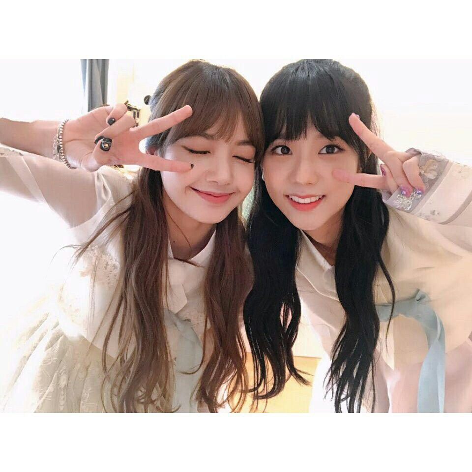 Blackpinkofficial Instagram Update With Lisa And Jisoo Blackpink