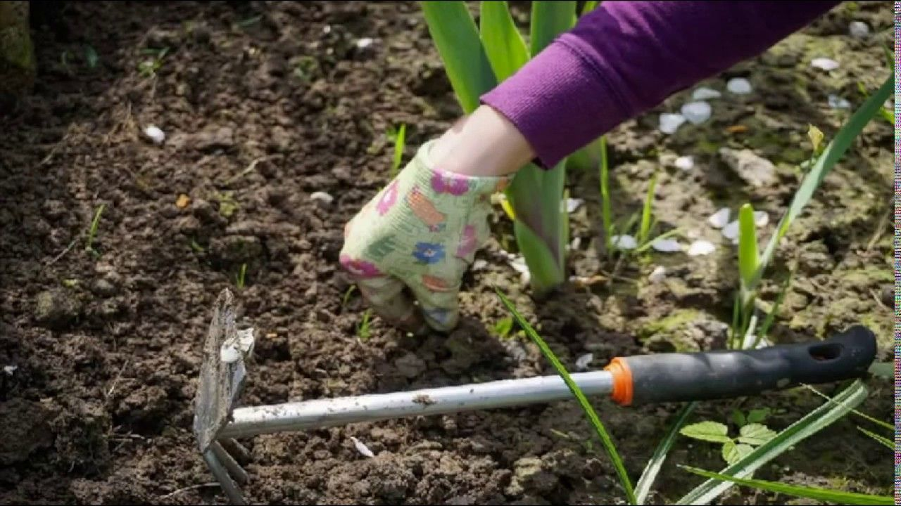 When first setting up a garden this can take an extensive amount of ...