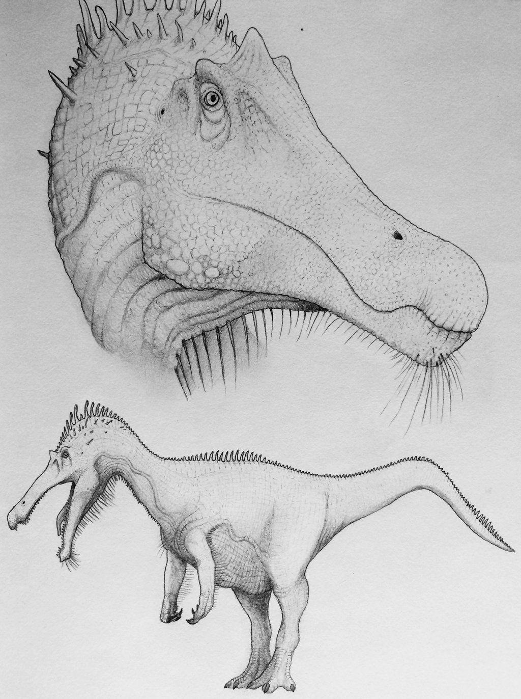 Baryonyx By Thegreatestloverart Dinosaur Art Prehistoric Animals Paleo Art