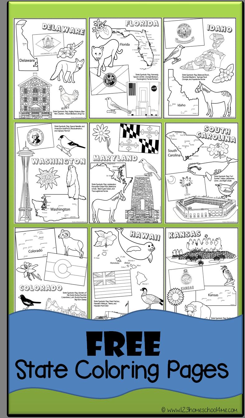 Free Read Learn Color State Coloring Pages Homeschool Social Studies Kindergarten Social Studies Homeschool [ 1343 x 788 Pixel ]