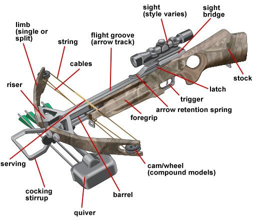 crossbow_parts_compound.jpg (520×440)