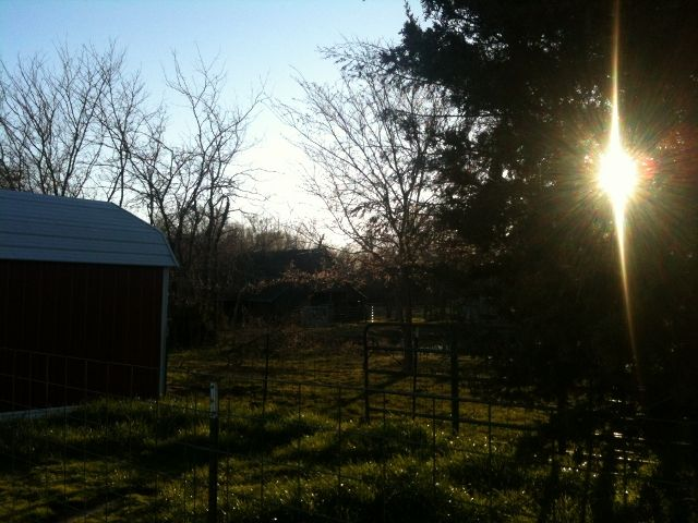 Passive Solar Energy Can Be FREE!    #TaylorMadeRanch