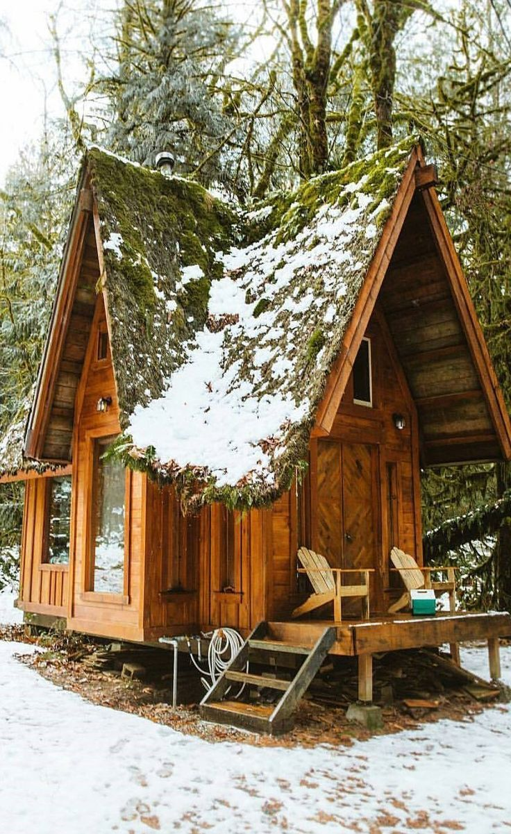 Tiny Cabin In The Snow Tiny House Cabin Little Cabin Cabins In The Woods