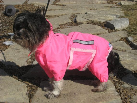 So silly and adorable. Full-body dog raincoat.