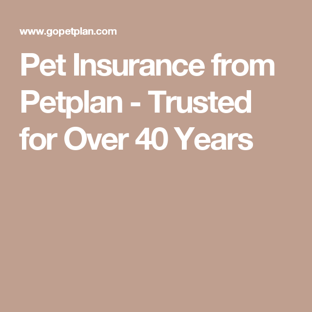 Pet Insurance from Petplan - Trusted for Over 40 Years ...