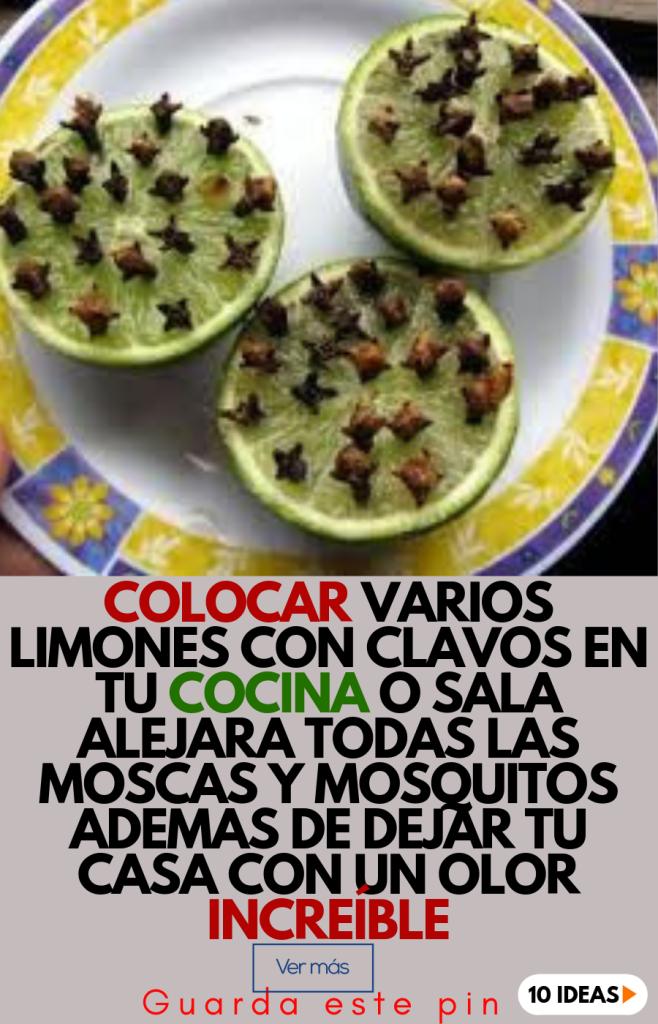 Usa Clavo Para Alejar Moscas Y Mosquitos De Tu Casa Y Dar Olor 10 Ideas Olor Mosquitos Consejos De Limpieza