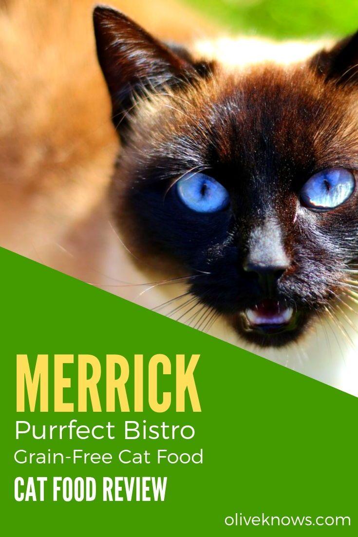Merrick Purrfect Bistro GrainFree Cat Food Review [2019