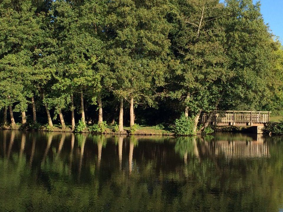 Le Poiré-sur-Vie à Pays de la Loire