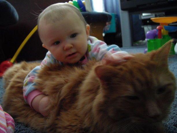 Baby loves kitty!