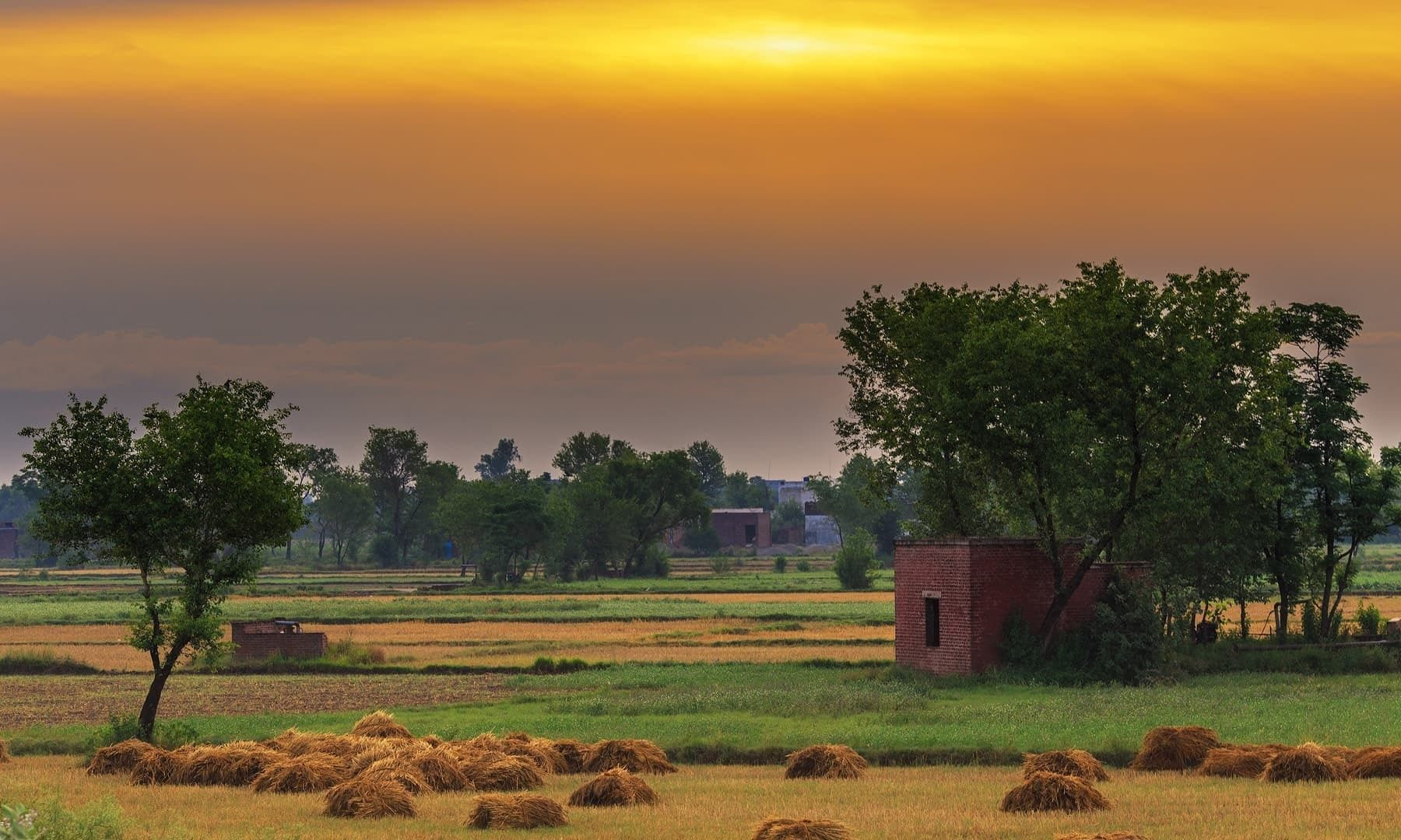 Chenab Pakistan S River Of Love Village Photography Pakistan Travel Landscape Photography