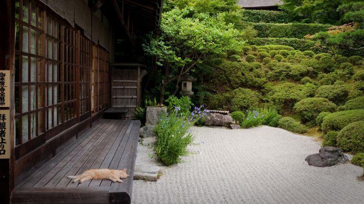 Fonds D Ecran Voyages Asie Fonds D Ecran Japon Jardin Japonais Par Bawa Hebus Com Amenagement Jardin Jardin Japonais Jardin Zen Japonais