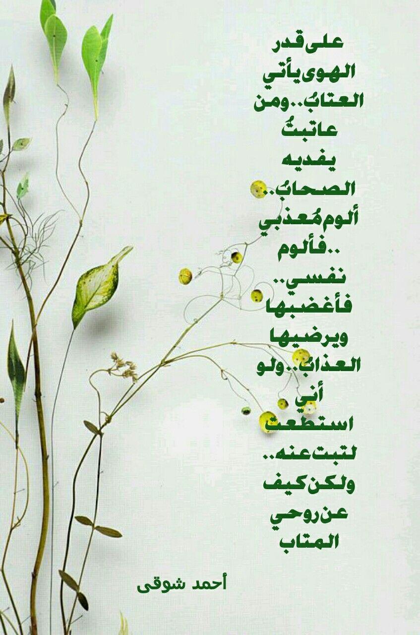 على قدر الهوى يأتى العتاب شعر أحمد شوقى حگآ يـﮯآ آ ل ق م ـر Arabic Words Words Love