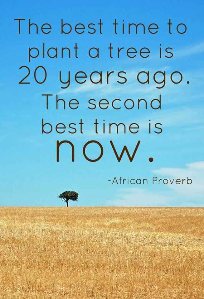 The best time to plant a tree is 20 years ago. The second best time is now. ~ African Proverb