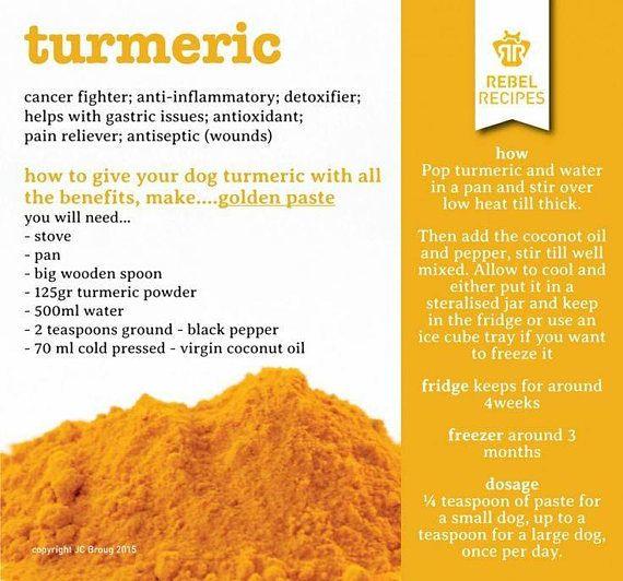TURMERIC Dog Treats by LA BARKERIA  Turmeric Peanut Butter