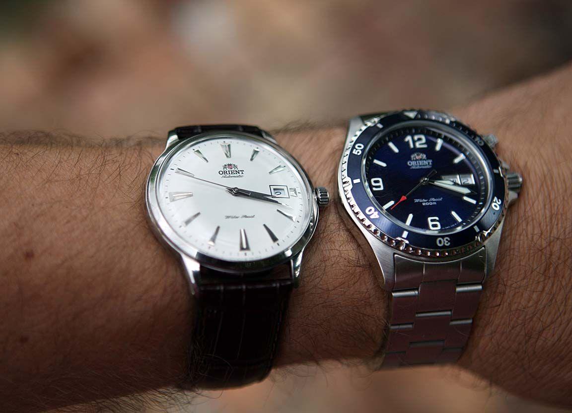 Orient Bambino Capital Wrist Shots Watches Seiko Watches