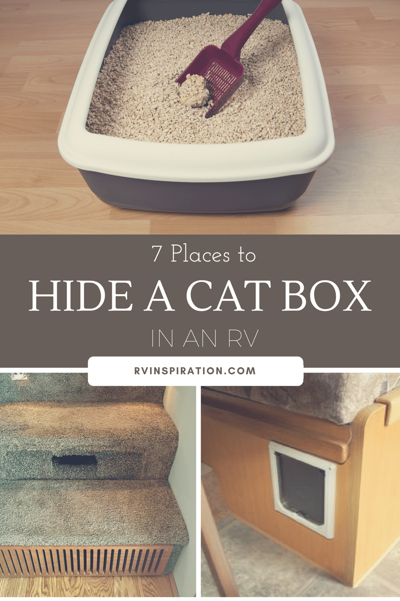 7 Places to Hide a Cat Box in an RV | Litter box, Small apartments ...
