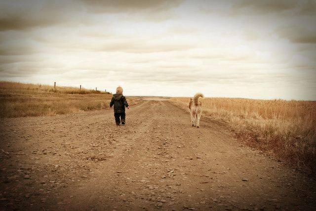 If only I could get my two boys to walk side by side.  This pic is so beautiful.