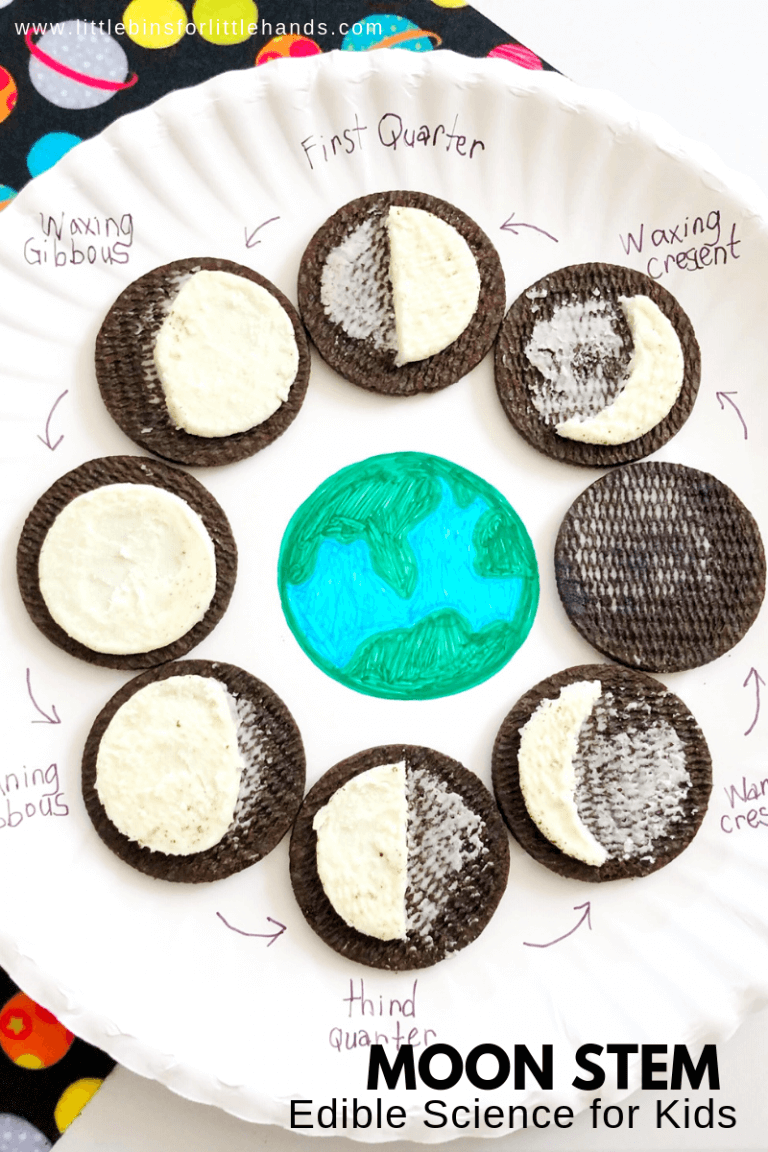 Oreo Moon Phases Activity is part of Moon phases activities, Science for kids, Oreo moon phases, Science lessons, Teaching classroom, Kids education - Yum! Let's enjoy a bit of edible astronomy with this Oreo moon phases activity project  Have you ever noticed the changing shape of the moon! Let's explore how the moon's shape or moon phases change over the course of the month with a favorite cookie sandwich  Learn the moon phases with this simple moon craft activity and snack  Explore the moon with neat STEM activities all month long  OREO MOON PHASES ACTIVITY FOR KIDS! LEARN ABOUT THE MOON Get ready to add this simple Oreo moon activity for kids to your space lesson plans this season  If you want to