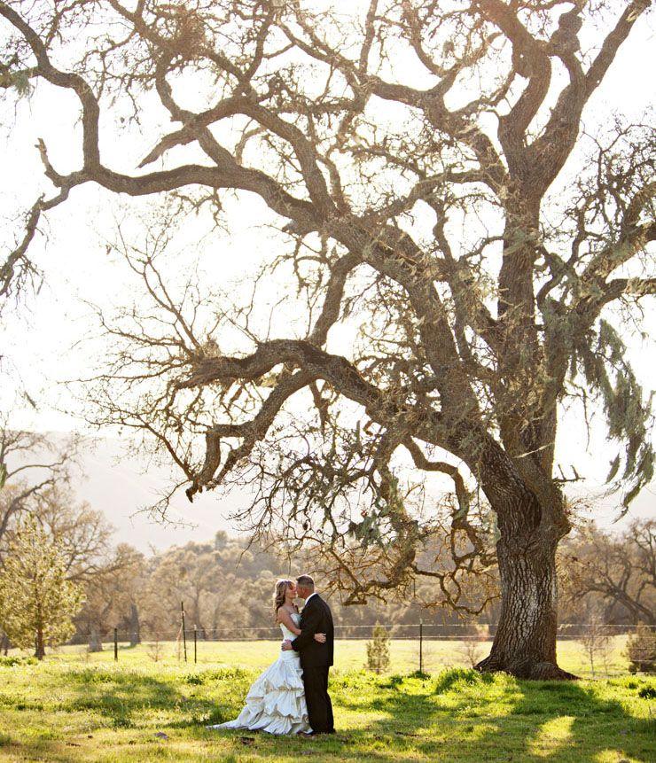 Colleen & Jesse California wedding, San luis obispo