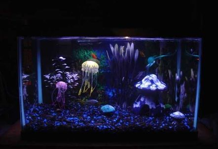 10 Gallon Aquarium With Fake Jellyfish