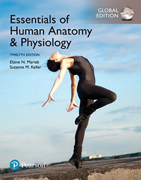 Free download Essentials of human anatomy & physiology, global 12th ...