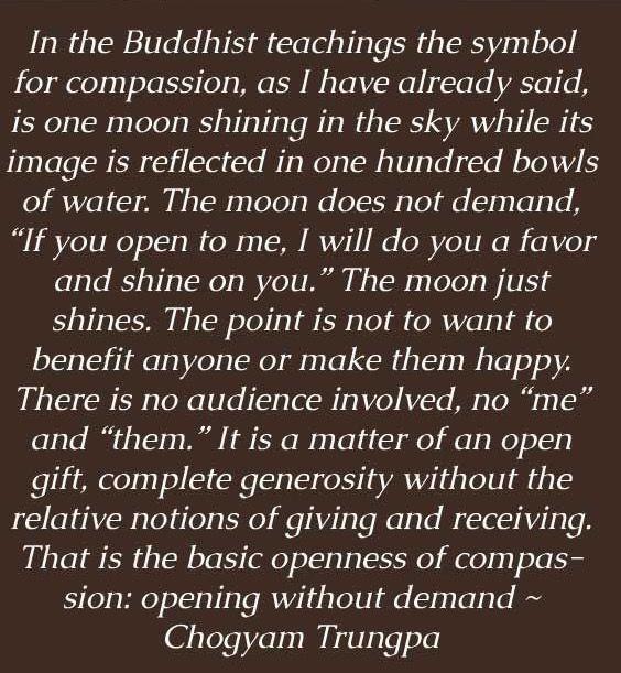 Buddha Love Quotes Pinlauren Row On Brutally Honest  Pinterest  Buddha Buddhism .