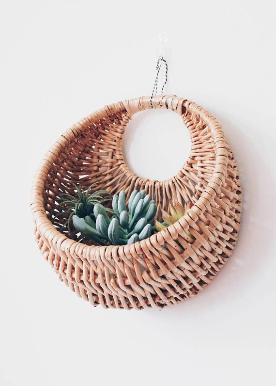 Round Hanging Wall Basket Great For Plants And Succulents Measures Length 11 5 Width 10 25 Depth Baskets On Wall Hanging Wall Baskets Basket Wall Decor