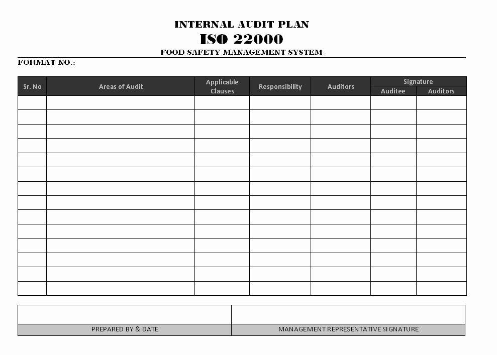 30 internal audit plan template in 2020 internal audit