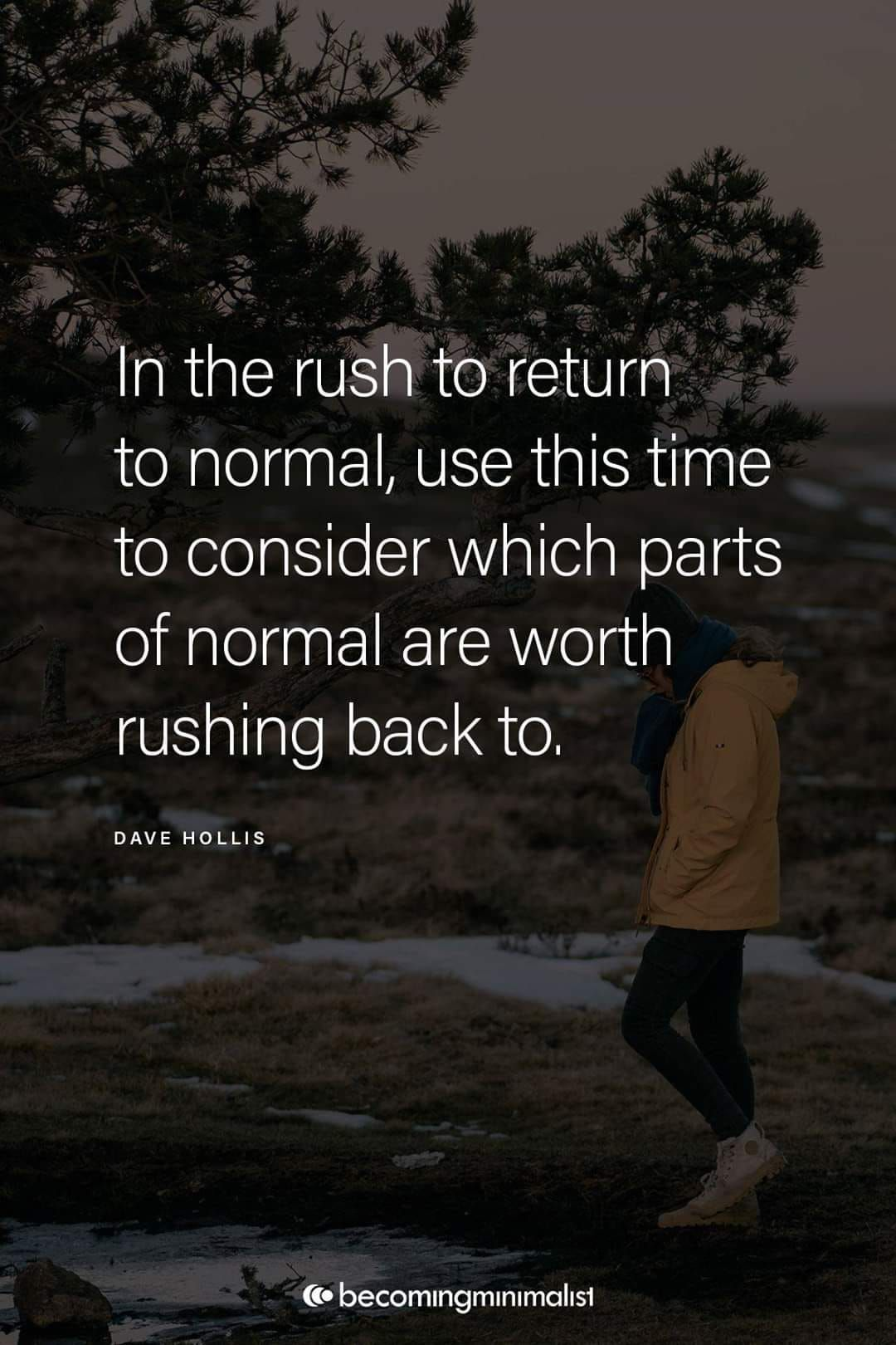 in the rush to return to normal in 5  Wise quotes, Positive