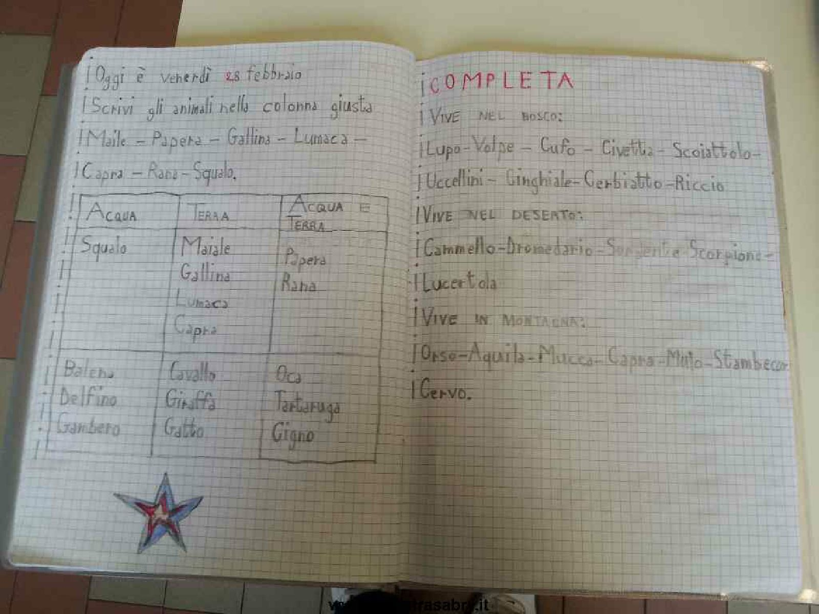 Quaderno Di Scienze Classe Prima Pdf To Flipbook Scienze