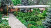 Die Bedeutung von immergrünen Sträuchern in Ihrer gemischten Grenze Hübsche lila Tür #immergrünesträucher Die Bedeutung von immergrünen Sträuchern in Ihrer gemischten Grenze Hübsche lila Tür #immergrünesträucher